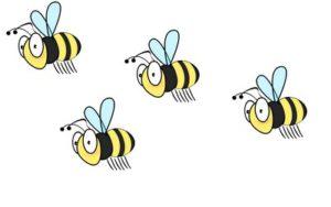 abeille en formation